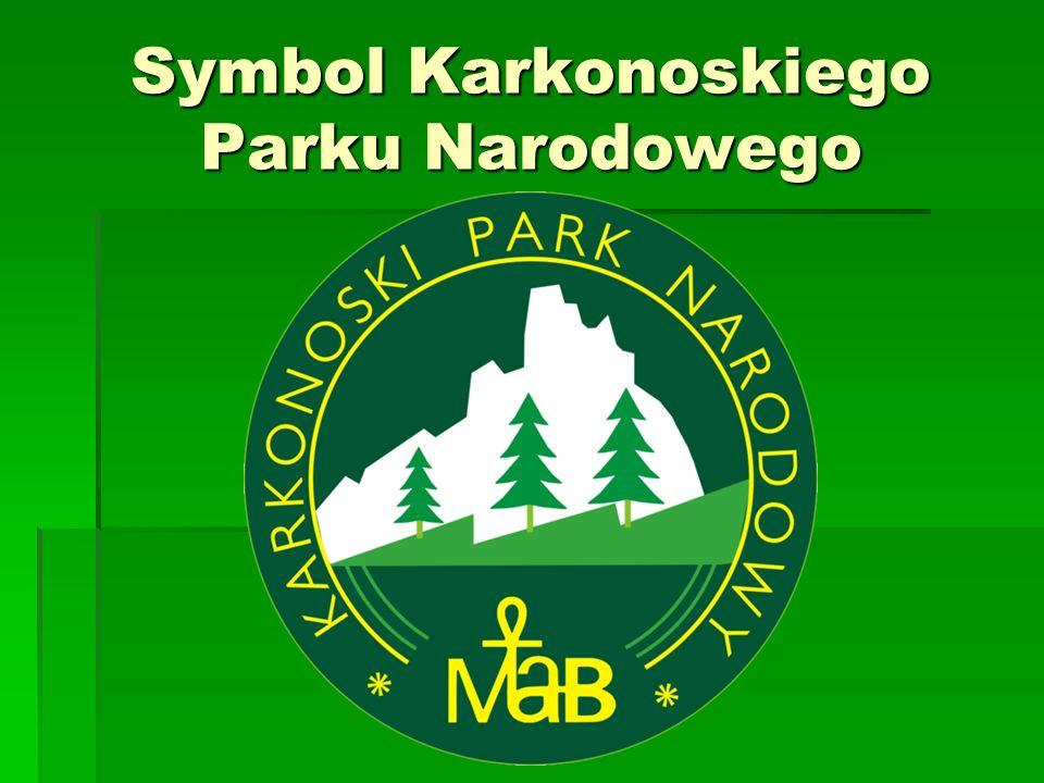 Opracowała : Monika Bober z klasy 4 Korzystałam ze strony www.wikipedia.pl