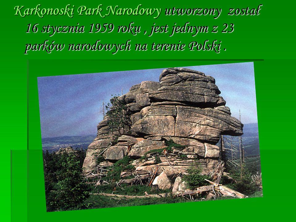 Karkonoski Park Narodowy utworzony został 16 stycznia 1959 roku, jest jednym z 23 parków narodowych na terenie Polski.