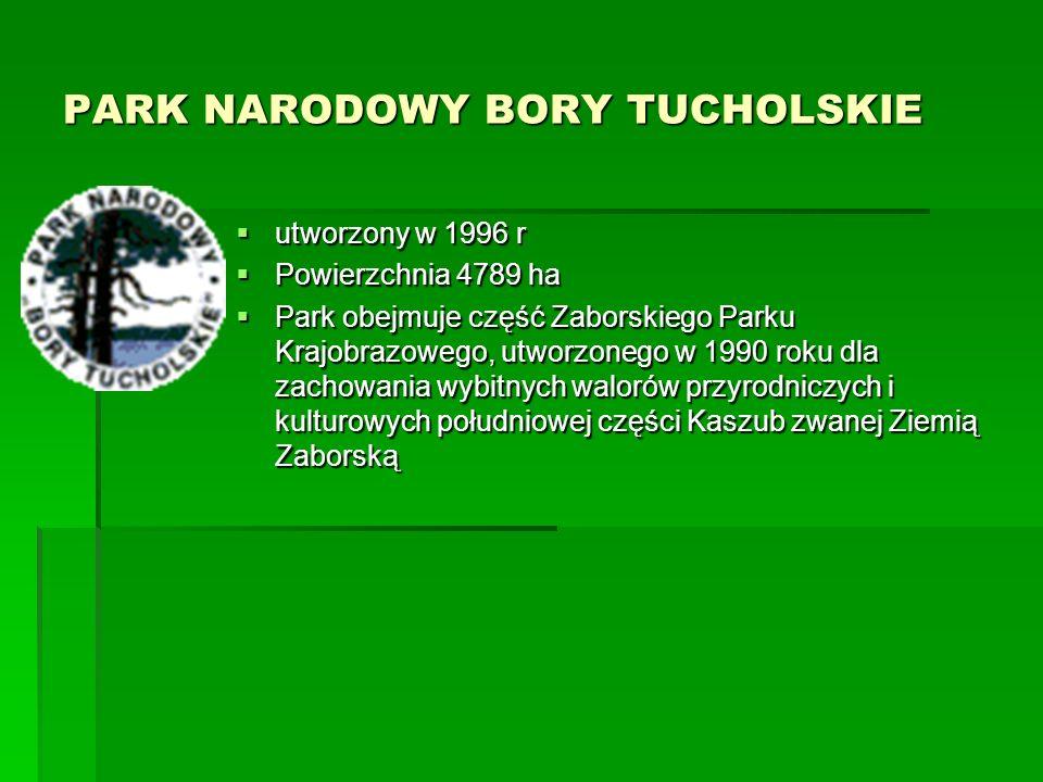 BIESZCZADZKI PARK NARODOWY  Utworzony w 1973r  Powierzchnia 292,02 km²  W 1992 roku Bieszczadzki Park Narodowy stał się częścią Międzynarodowego Rezerwatu Biosfery Karpaty Wschodnie