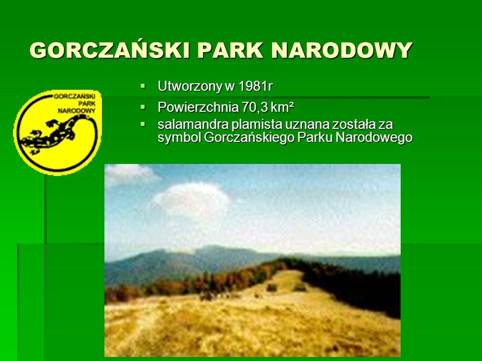DRAWIEŃSKI PARK NARODOWY  Utworzony 1 maja 1990r  Powierzchnia 113,42 km²  Jednym z głównych motywów utworzenia parku była potrzeba ochrony szczególnie cennych odcinków rzek Drawy i Płocicznej wraz z otaczającymi je lasami
