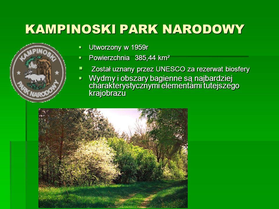 PARK NARODOWY GÓR STOŁOWYCH PARK NARODOWY GÓR STOŁOWYCH  Utworzony w 1993r  Powierzchnia 63,39 km²  W charakterystycznym dla Gór Stołowych środowisku spękań i szczelin skał piaskowcowych bytują nietoperze