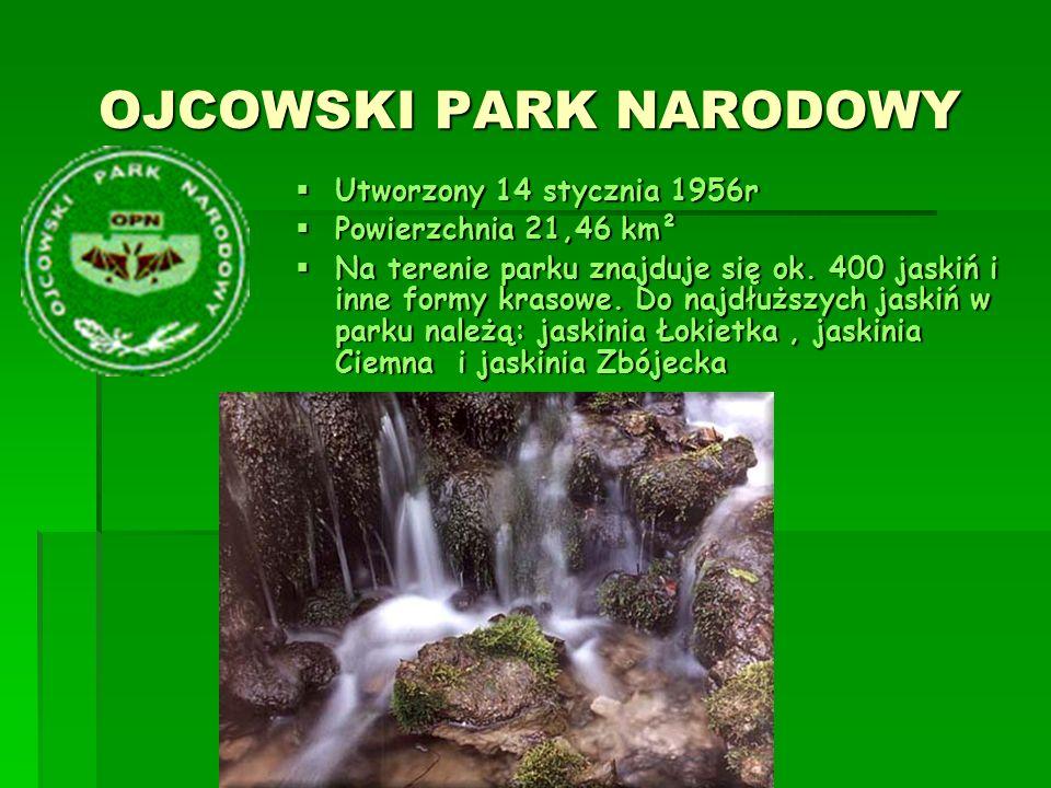 NARWIAŃSKI PARK NARODOWY NARWIAŃSKI PARK NARODOWY  Utworzony w 1996r  Powierzchnia 73,5 km²  Obejmuje on bagienną dolinę Narwi pomiędzy Surażem i Rzędzianami.