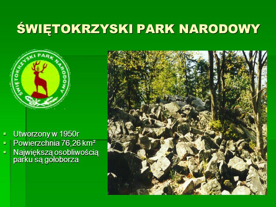 SŁOWIŃSKI PARK NARODOWY SŁOWIŃSKI PARK NARODOWY  Utworzony 1 stycznia 1067r  Powierzchnia 186,18 km²  Charakterystycznymi elementami Parku są przymorskie jeziora, bagna, łąki, torfowiska, nadmorskie bory i lasy, a przede wszystkim wydmowy pas mierzei z ruchomymi wydmami