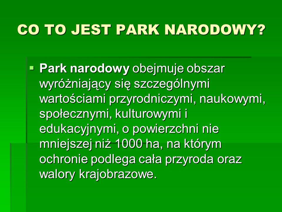 POLESKI PARK NARODOWY POLESKI PARK NARODOWY  Utworzony w 1990r  Powierzchnia 97,62 km²  Na terenie parku występują liczne bagna, torfowiska i jeziora krasowe oraz naturalne kompleksy leśne z bogactwem flory i fauny