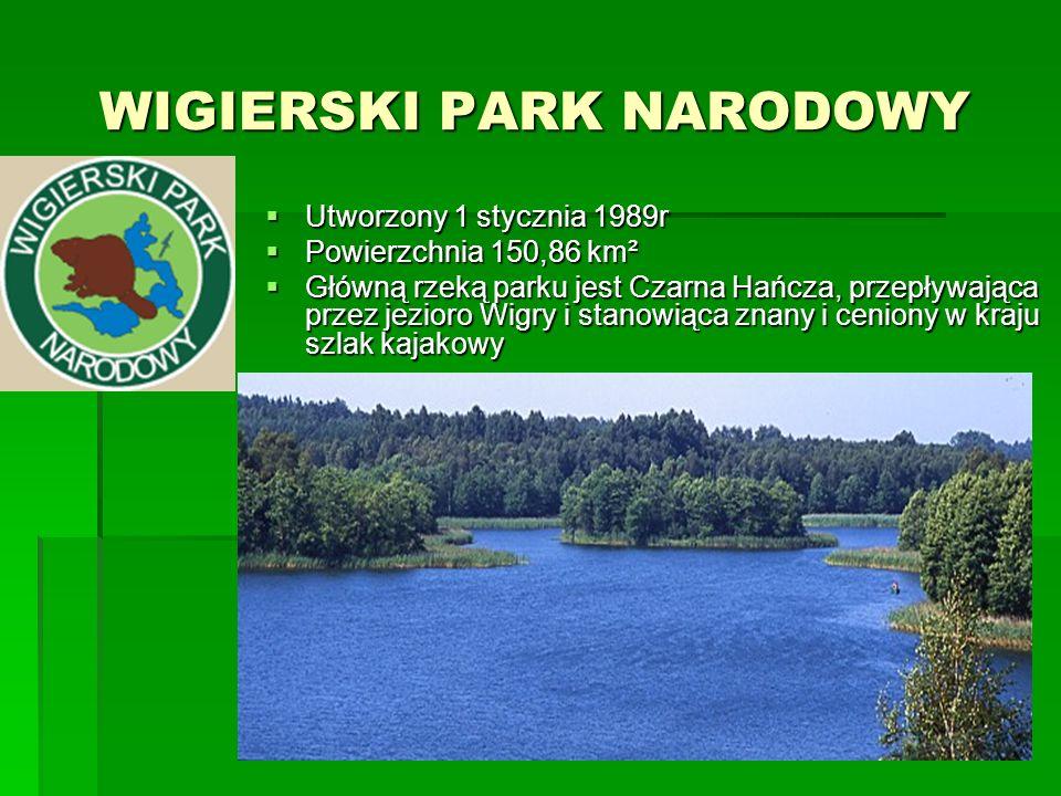 WIELKOPOLSKI PARK NARODOWY WIELKOPOLSKI PARK NARODOWY  Utworzony w 1957r  Powierzchnia 75,84 km²  Obejmuje część Pojezierza Poznańskiego oraz niewielkie fragmenty Poznańskiego Przełomu Warty