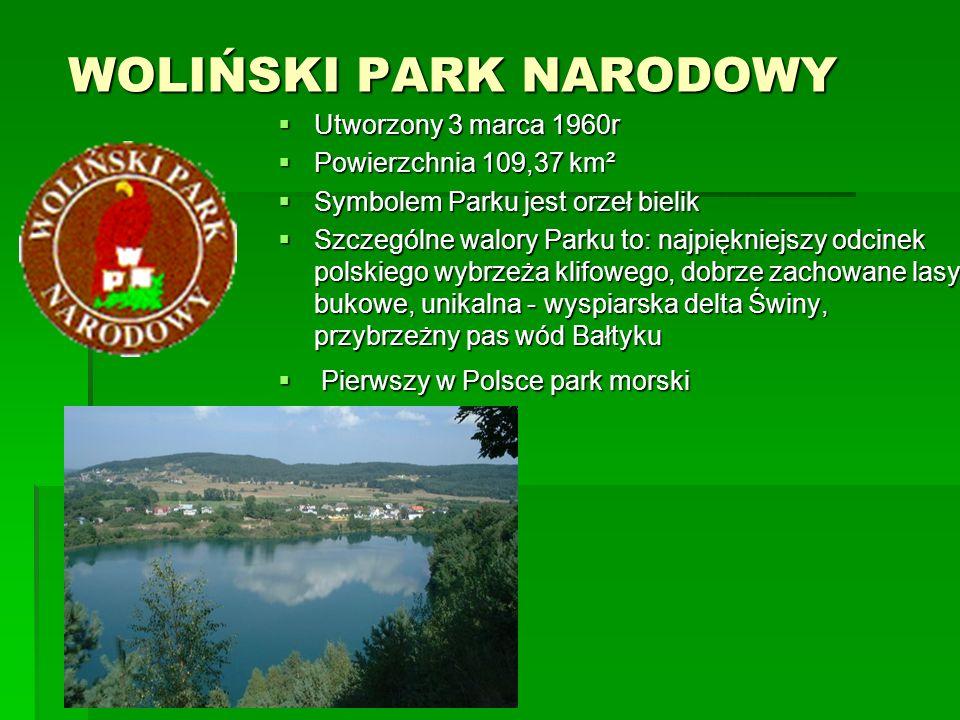 WIGIERSKI PARK NARODOWY WIGIERSKI PARK NARODOWY  Utworzony 1 stycznia 1989r  Powierzchnia 150,86 km²  Główną rzeką parku jest Czarna Hańcza, przepływająca przez jezioro Wigry i stanowiąca znany i ceniony w kraju szlak kajakowy