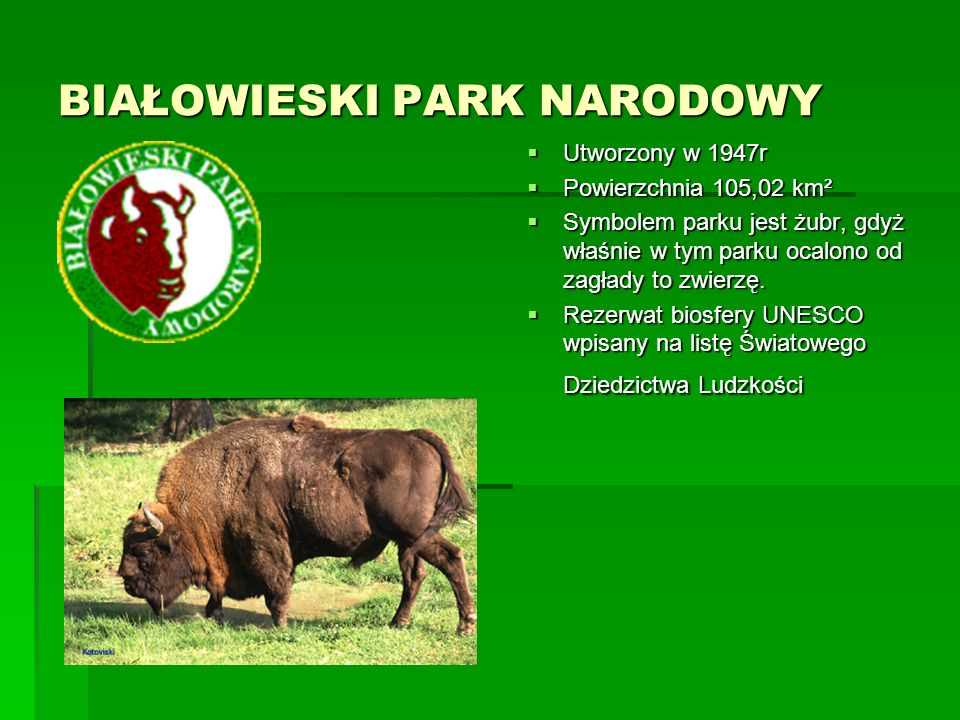 BABIOGÓRSKI PARK NARODOWY  Utworzony 30 października 1954r  Powierzchnia 3392 ha  Od 1977 r.