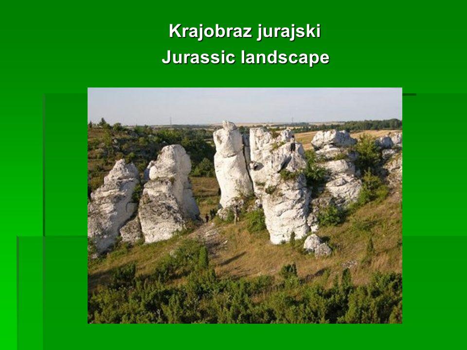 Krajobraz jurajski Krajobraz jurajski Jurassic landscape Jurassic landscape