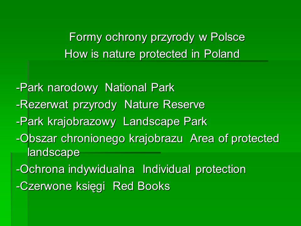 Formy ochrony przyrody w Polsce Formy ochrony przyrody w Polsce How is nature protected in Poland -Park narodowy National Park -Rezerwat przyrody Natu
