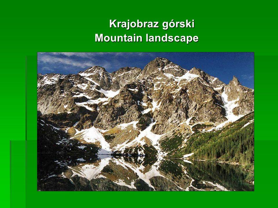 Krajobraz górski Krajobraz górski Mountain landscape
