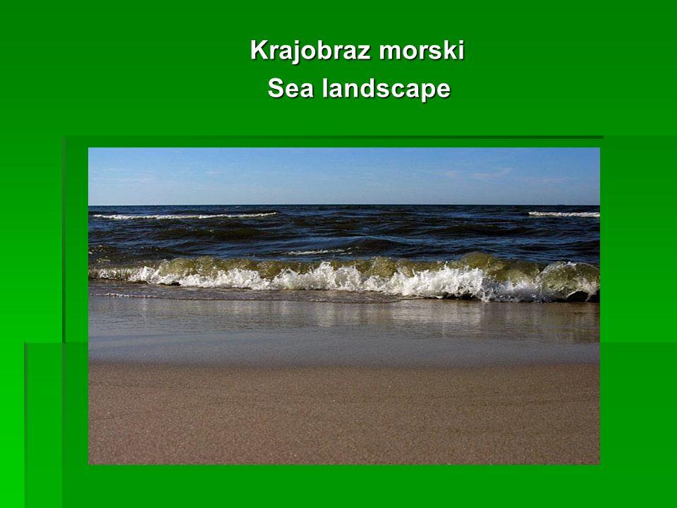Krajobraz morski Krajobraz morski Sea landscape Sea landscape