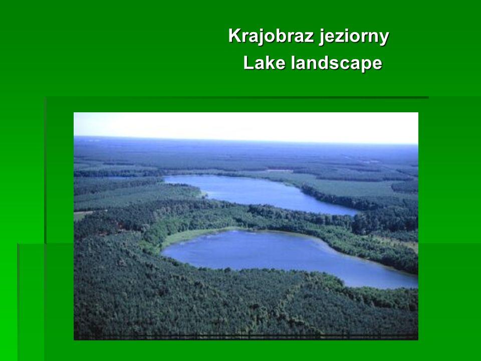 Krajobraz jeziorny Krajobraz jeziorny Lake landscape Lake landscape