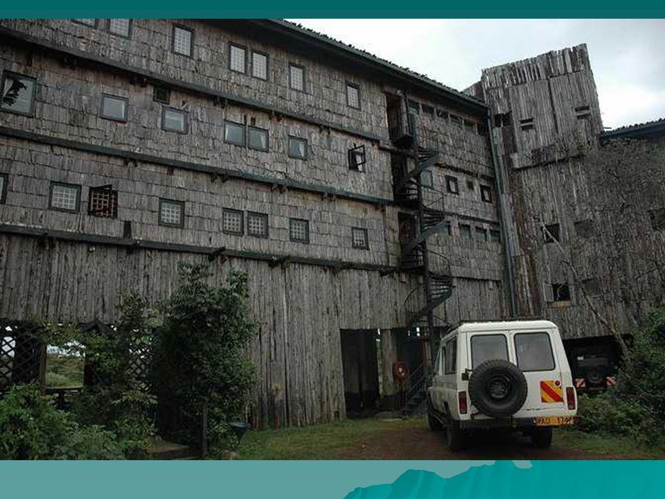Drewniany Hotel Treetops zbudowany w odległości 80 km od łańcucha górskiego Aberdare.