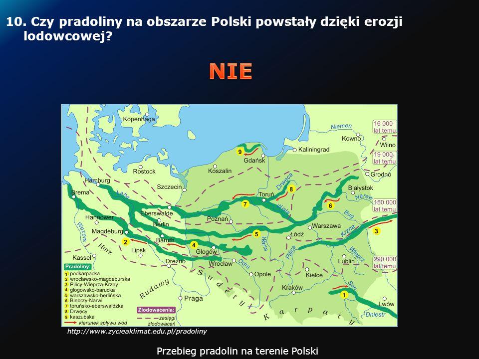 9.Czy grubość pokrywy lądolodu w czasie zlodowaceń plejstoceńskim mogła na obszarze Polski być większa od 1 km.