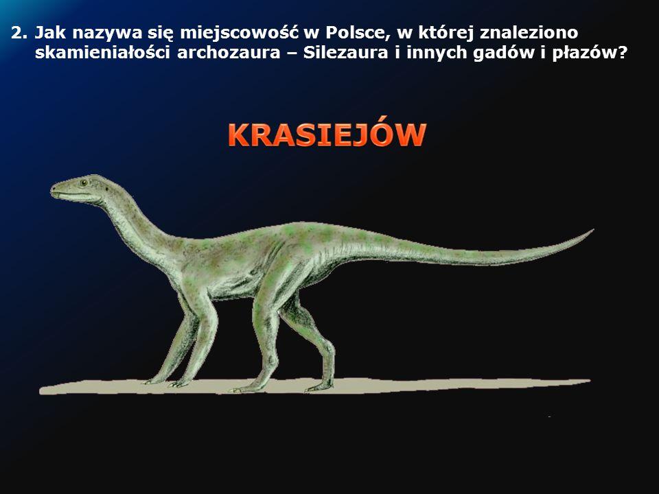 1.Jak nazywa się miejscowość w Polsce, w której znaleziono skamieniałość nazwaną smokiem.