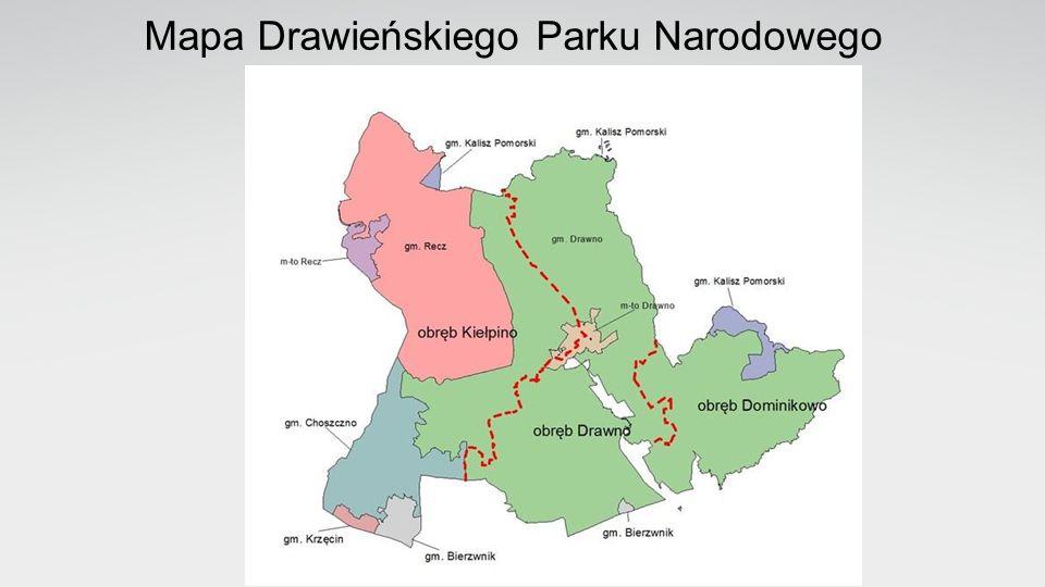 Drawieński Park Narodowy Położenie Drawieńskiego Parku Narodowego: -Długość geograficzna od 15°45 do 16°45 E -Szerokość geograficzna od 53°00 do 53°15 N Fizyczno geograficzna regionalizacja Polski w układzie J.