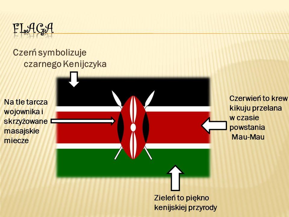 Czerń symbolizuje czarnego Kenijczyka Czerwień to krew kikuju przelana w czasie powstania Mau-Mau Zieleń to piękno kenijskiej przyrody Na tle tarcza wojownika i skrzyżowane masajskie miecze