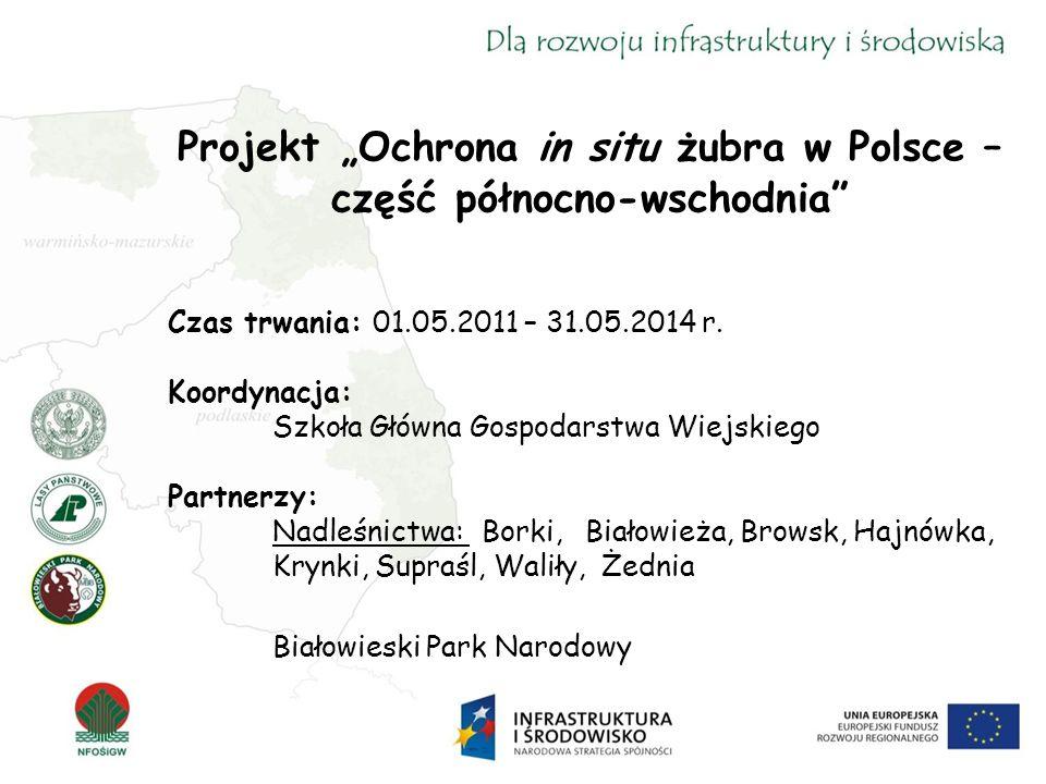 """Projekt """"Ochrona in situ żubra w Polsce – część północno-wschodnia Czas trwania: 01.05.2011 – 31.05.2014 r."""