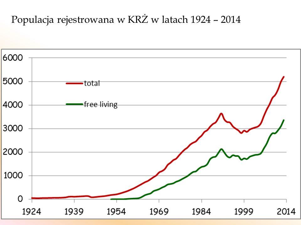 Populacja rejestrowana w KRŻ w latach 1924 – 2014