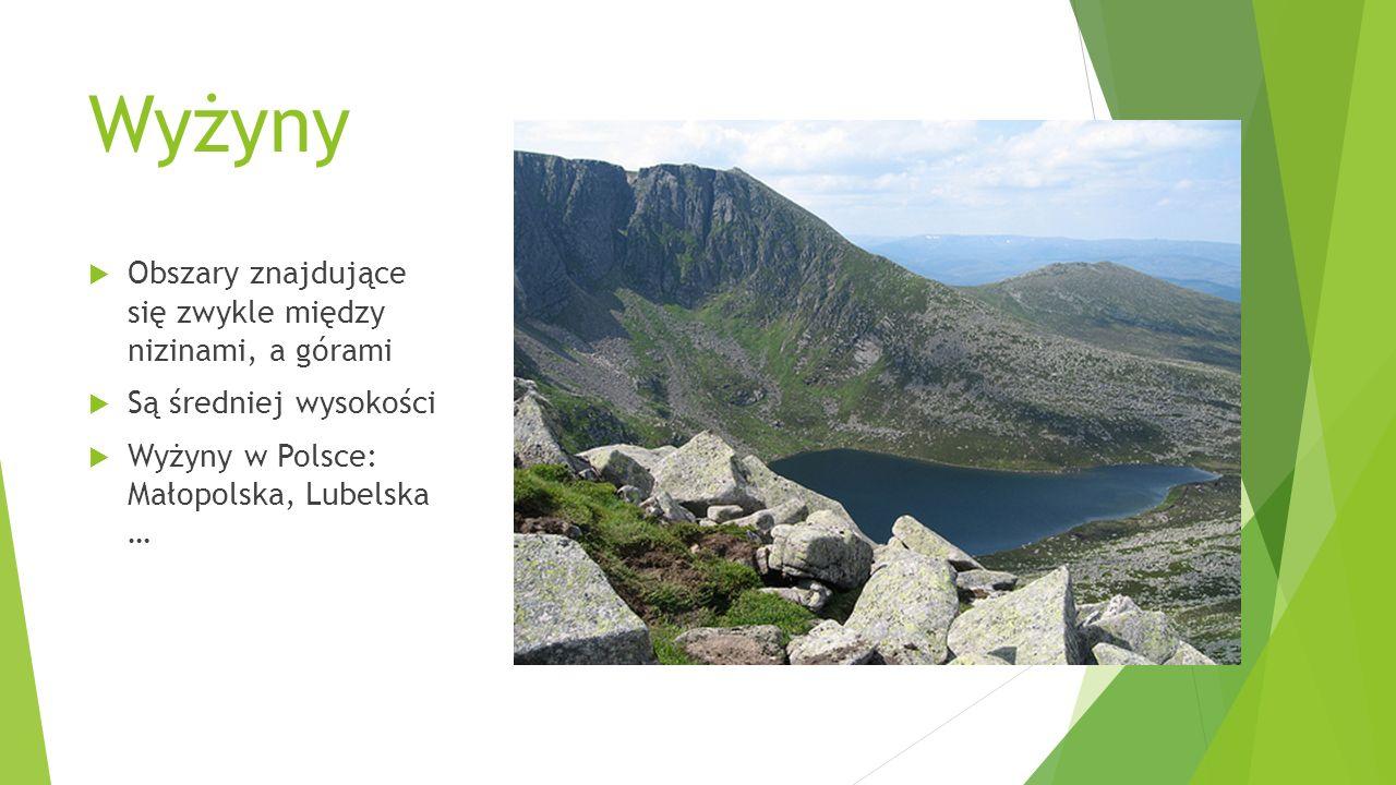 Wyżyny  Obszary znajdujące się zwykle między nizinami, a górami  Są średniej wysokości  Wyżyny w Polsce: Małopolska, Lubelska …