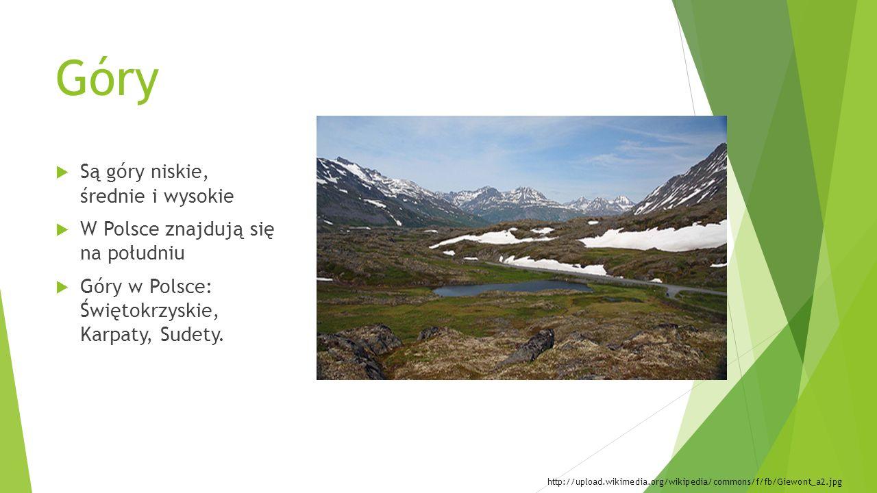 Wybrane Parki Narodowe Park Narodowy – obszar chroniony ze względu na swoje walory przyrodnicze, faunę i florę.