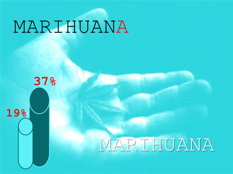 MARIHUANA MARIHUANA 19% 37%