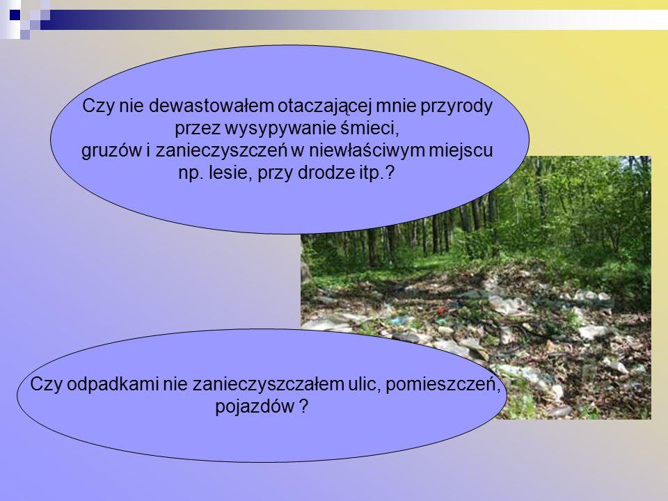 Czy nie dewastowałem otaczającej mnie przyrody przez wysypywanie śmieci, gruzów i zanieczyszczeń w niewłaściwym miejscu np.