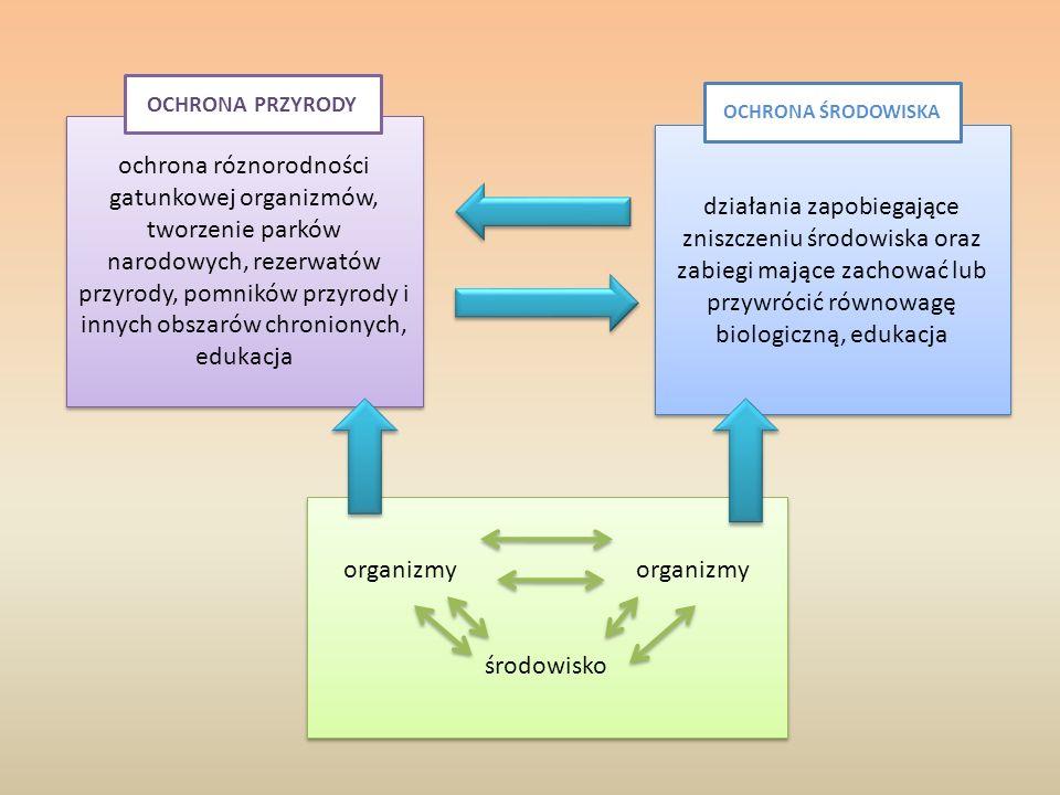 Ekosystem Jest to układ ekologiczny złożony z biocenozy i jej nieożywionego, fizycznego środowiska – biotopu, które wzajemnie na siebie oddziałują biocenoza – zespół populacji roślinnych oraz zwierzęcych powiązanych wzajemnymi zależnościami i żyjących w określonym środowisku biotop - nieożywione środowisko życia organizmów