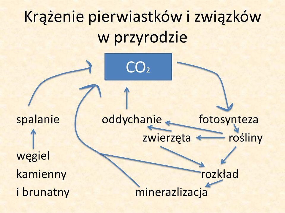 Krążenie pierwiastków i związków w przyrodzie spalanie oddychanie fotosynteza zwierzęta rośliny węgiel kamienny rozkład i brunatny minerazlizacja CO 2