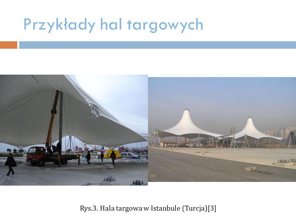 Przykłady hal targowych Rys.3. Hala targowa w Istanbule (Turcja)[3]