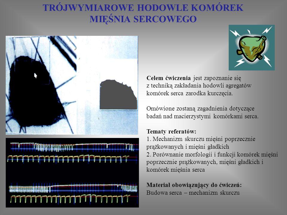 ZAKŁADANIE HODOWLI PIERWOTNYCH FIBROBLASTÓW ZARODKA KURCZĘCIA Ćwiczenie ma na celu z apoznanie się z podstawowymi technikami bezpośredniej izolacji komórek z tkanek i ich przygotowania do hodowli w układach in vitro Zagadnienia do przygotowania: 1.Hodowle komórkowe in vitro Zalecana literatura: Instrukcje do ćwiczeń 1.D.