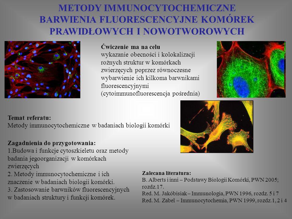 METODY IMMUNOCYTOCHEMICZNE BARWIENIA FLUORESCENCYJNE KOMÓREK PRAWIDŁOWYCH I NOWOTWOROWYCH Zagadnienia do przygotowania: 1.Budowa i funkcje cytoszkieletu oraz metody badania jegoorganizacji w komórkach zwierzęcych 2.