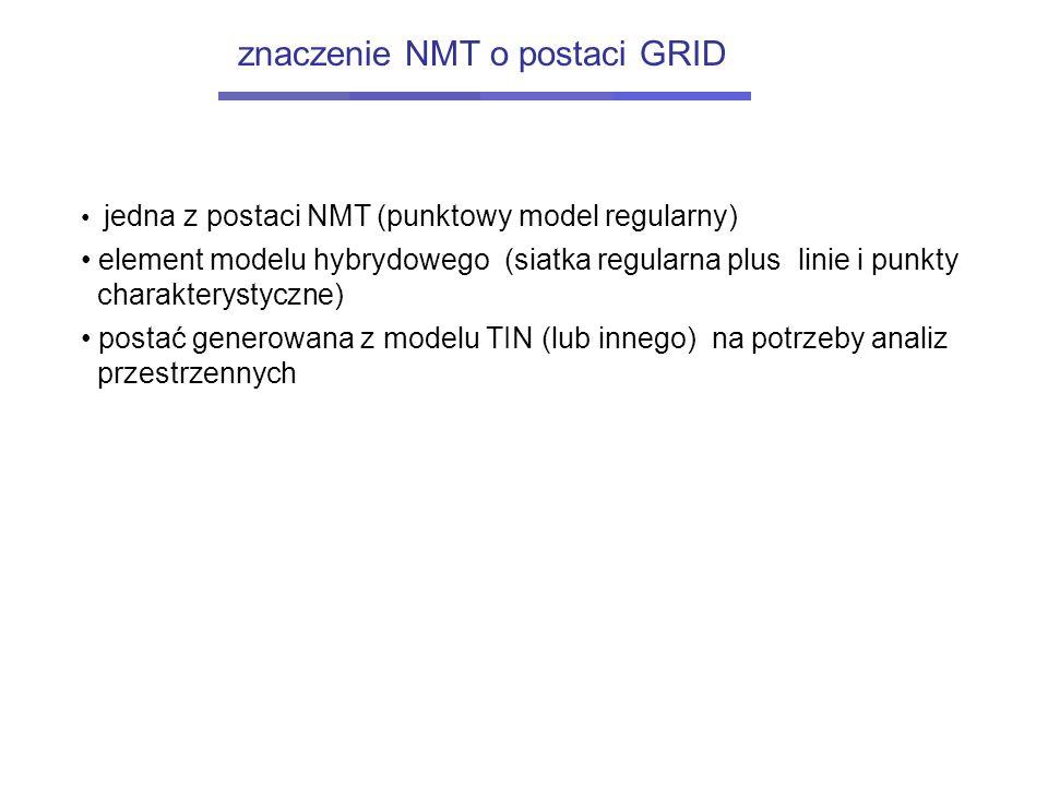 jedna z postaci NMT (punktowy model regularny) element modelu hybrydowego (siatka regularna plus linie i punkty charakterystyczne) postać generowana z