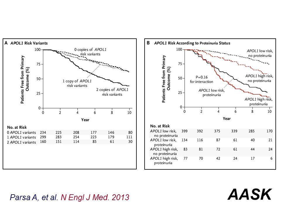 Parsa A, et al. N Engl J Med. 2013 AASK