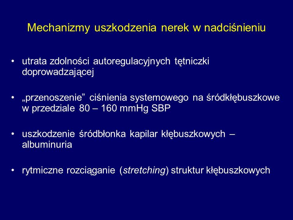 """Mechanizmy uszkodzenia nerek w nadciśnieniu utrata zdolności autoregulacyjnych tętniczki doprowadzającej """"przenoszenie ciśnienia systemowego na śródkłębuszkowe w przedziale 80 – 160 mmHg SBP uszkodzenie śródbłonka kapilar kłębuszkowych – albuminuria rytmiczne rozciąganie (stretching) struktur kłębuszkowych"""