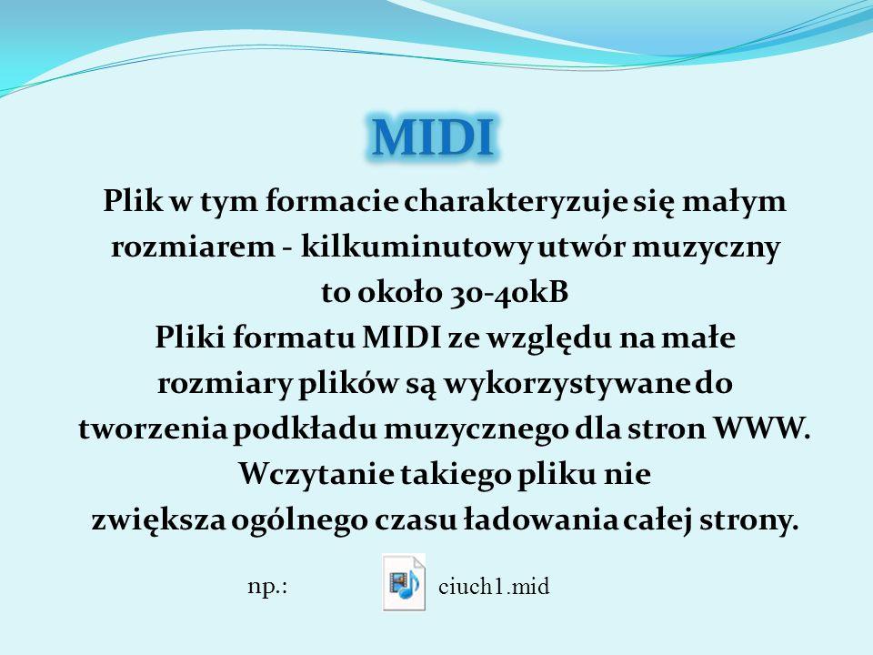 Plik w tym formacie charakteryzuje się małym rozmiarem - kilkuminutowy utwór muzyczny to około 30-40kB Pliki formatu MIDI ze względu na małe rozmiary plików są wykorzystywane do tworzenia podkładu muzycznego dla stron WWW.