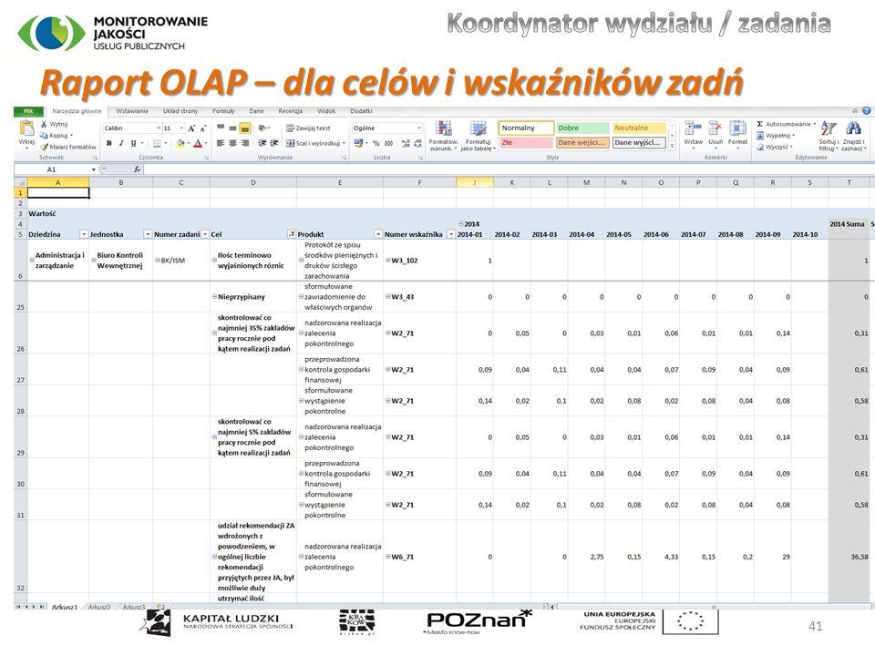 Raport OLAP – dla celów i wskaźników zadń 41