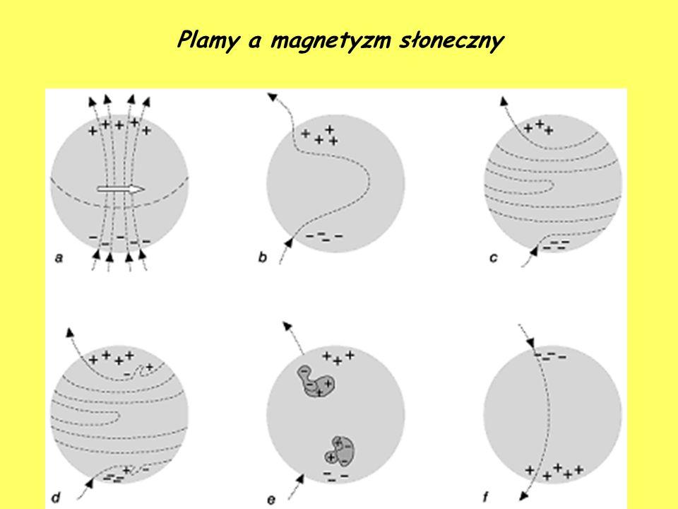 Plamy a magnetyzm słoneczny