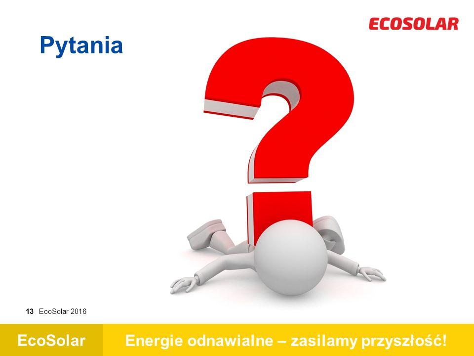 EcoSolar Energie odnawialne – zasilamy przyszłość! 13EcoSolar 2016 Pytania