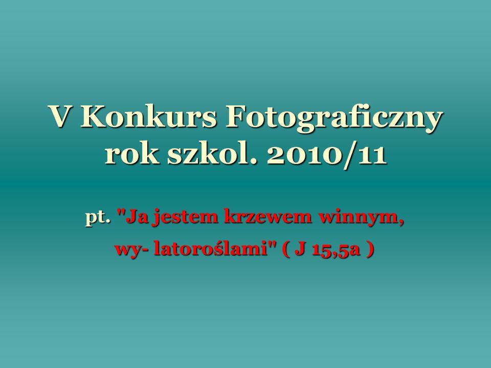 V Konkurs Fotograficzny rok szkol. 2010/11 pt.