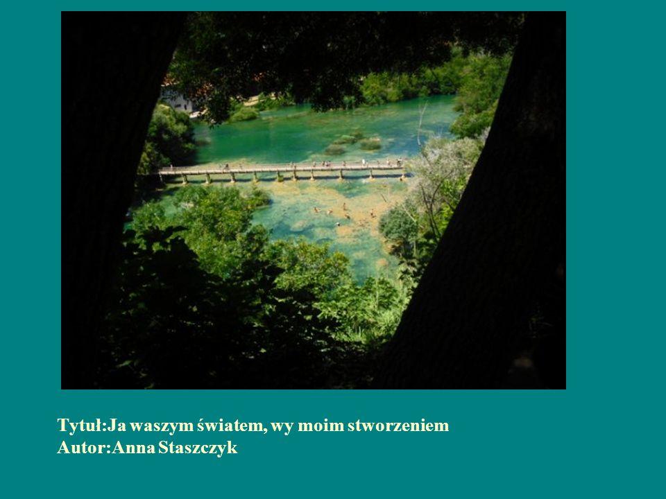 Tytuł:Ja waszym światem, wy moim stworzeniem Autor:Anna Staszczyk