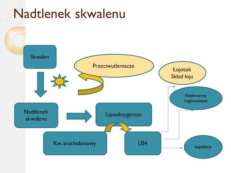 Laktoferryna Białko z grupy transferyn – wiąże żelazo Wydzielana przez  Nabłonki ziarniste : mleko 1g/L; oskrzela, gruczoły łzowe i śluzowe  Granulocyty obojętnochłonne