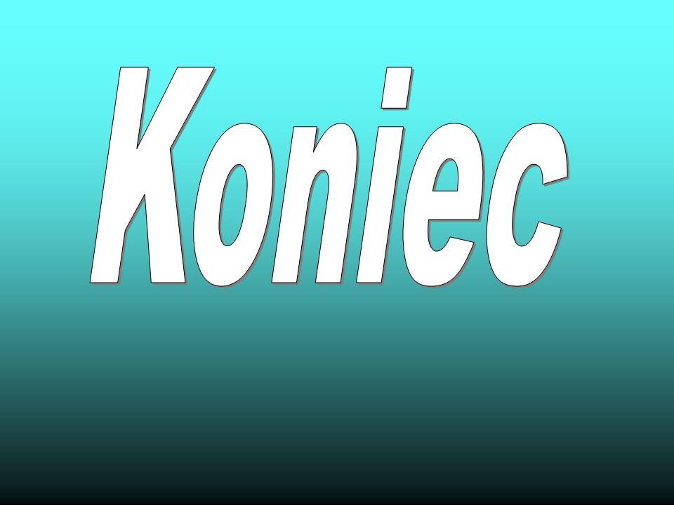Źródła http://pl.wikipedia.org/wiki/Robinson_Crusoe http://www.bryk.pl/lektury/daniel_defoe/robinson _crusoe.kr%C3%B3tkie_streszczenie.htmlhttp://www.bryk.pl/lektury/daniel_defoe/robinson _crusoe.kr%C3%B3tkie_streszczenie.html http://polski.opracowania.pl/robinson_kruzoe_d_d efoe/streszczenie/http://polski.opracowania.pl/robinson_kruzoe_d_d efoe/streszczenie/
