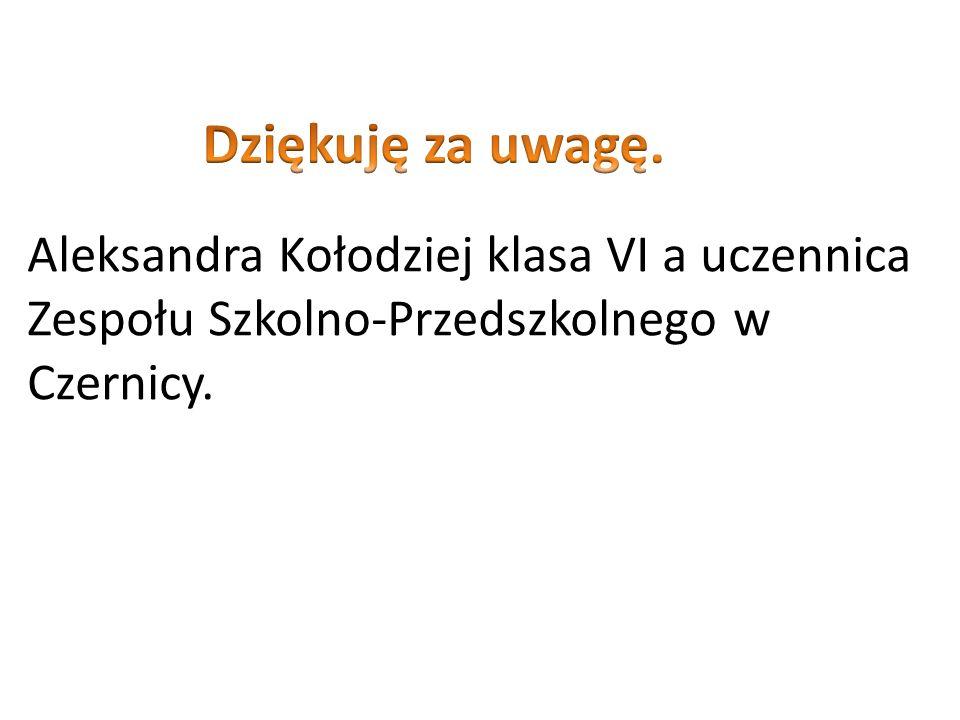 Aleksandra Kołodziej klasa VI a uczennica Zespołu Szkolno-Przedszkolnego w Czernicy.