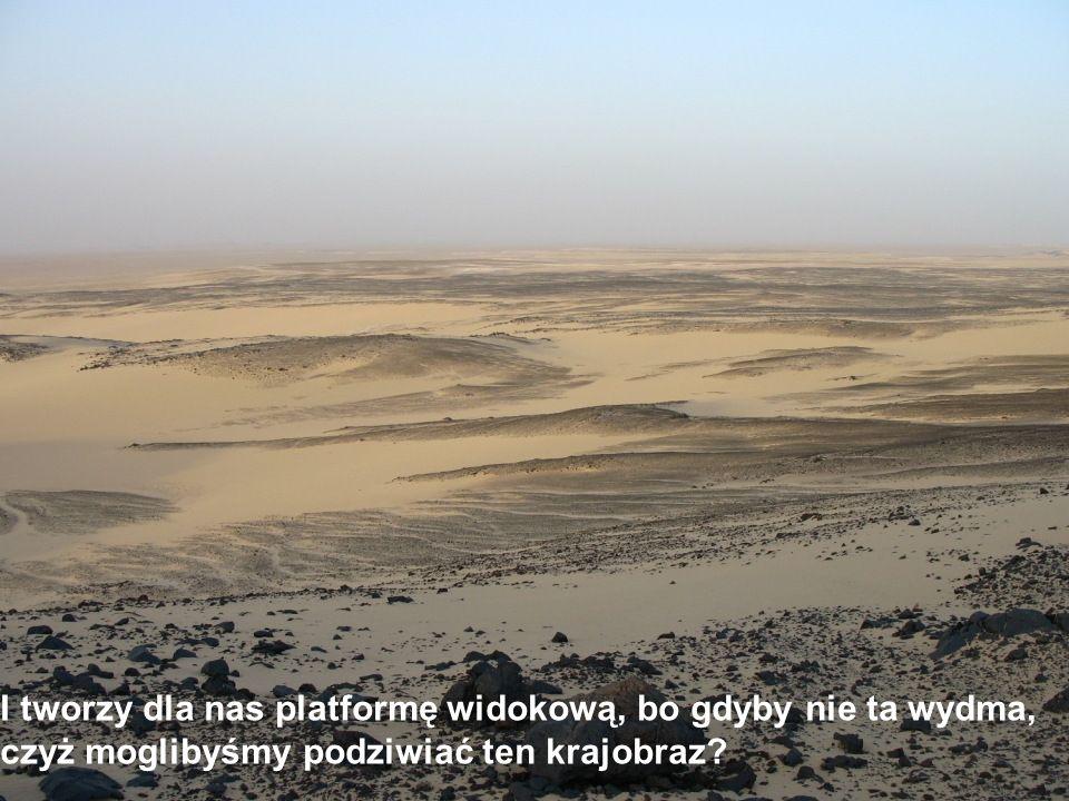 A jak już rzeka piachu spłynie ze zbocza, to nie rozwieje się po równinie, lecz niczym mityczny potwór wije się ogromnym cielskiem po bezkresnym płaskowyżu