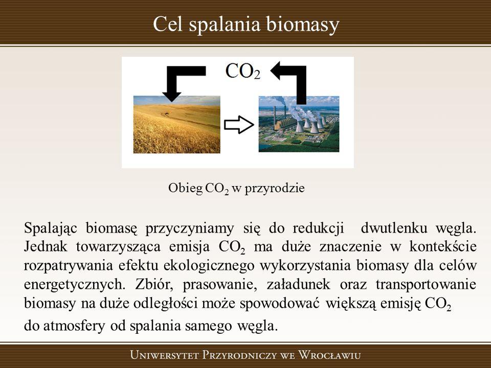 Cel spalania biomasy Spalając biomasę przyczyniamy się do redukcji dwutlenku węgla. Jednak towarzysząca emisja CO 2 ma duże znaczenie w kontekście roz