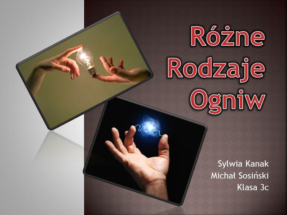Sylwia Kanak Michał Sosiński Klasa 3c