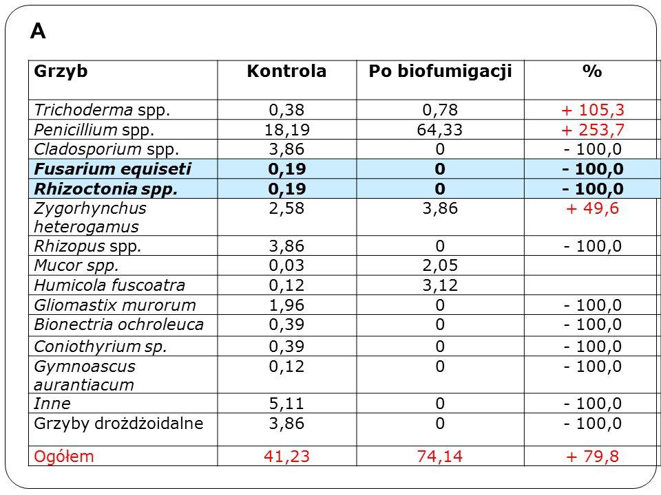 GrzybKontrolaPo biofumigacji% Trichoderma spp.0,380,78+ 105,3 Penicillium spp.18,1964,33+ 253,7 Cladosporium spp.3,860- 100,0 Fusarium equiseti0,190- 100,0 Rhizoctonia spp.0,190- 100,0 Zygorhynchus heterogamus 2,583,86+ 49,6 Rhizopus spp.3,860- 100,0 Mucor spp.0,032,05 Humicola fuscoatra0,123,12 Gliomastix murorum1,960- 100,0 Bionectria ochroleuca0,390- 100,0 Coniothyrium sp.0,390- 100,0 Gymnoascus aurantiacum 0,120- 100,0 Inne5,110- 100,0 Grzyby drożdżoidalne3,860- 100,0 Ogółem41,2374,14+ 79,8 A
