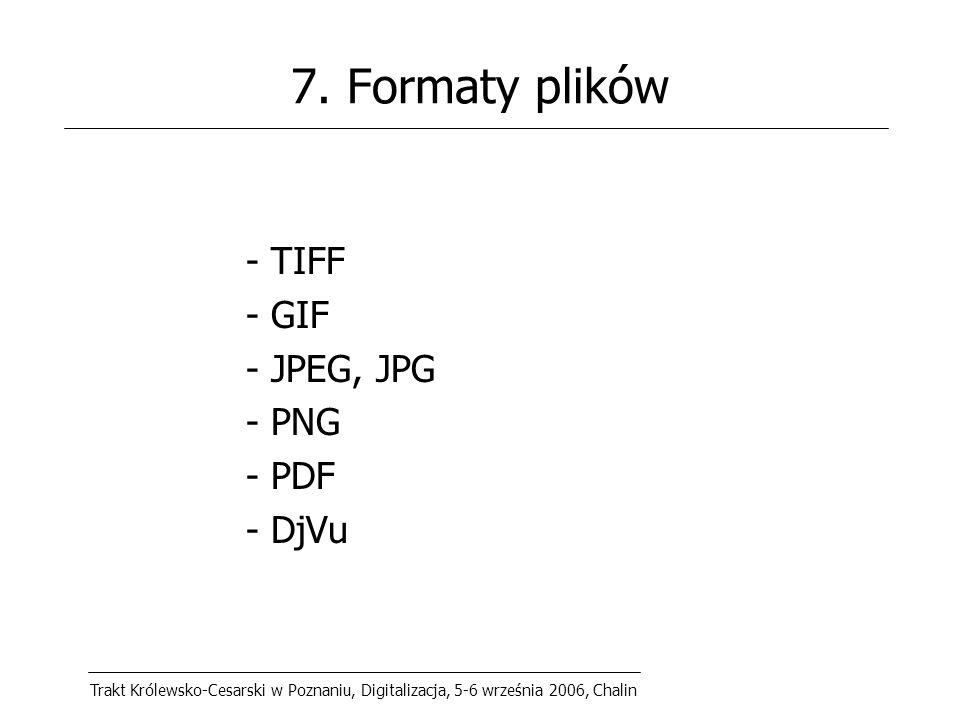 Trakt Królewsko-Cesarski w Poznaniu, Digitalizacja, 5-6 września 2006, Chalin 7.