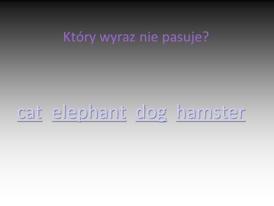 Który wyraz nie pasuje? catcat elephant dog hamster elephantdoghamster catelephantdoghamster